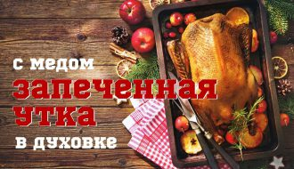 UTKA S MEDOM V DUXOVKE_1